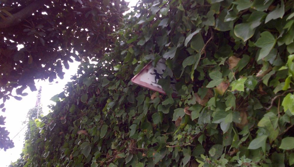 Señal de peligro por un lugar frecuentado por niños escondida en un árbol
