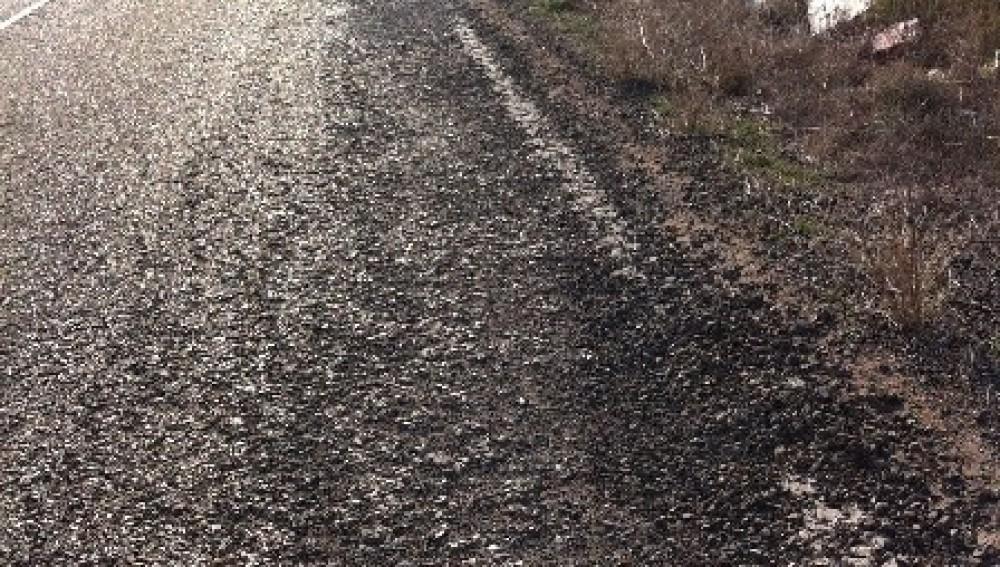 Carretera Botorrita-Fuendetodos
