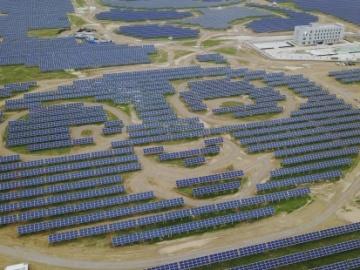 Una planta de placas solares con forma de oso panda
