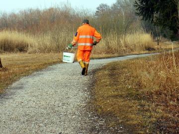 SEO/BirfLife busca protectores del medio ambiente