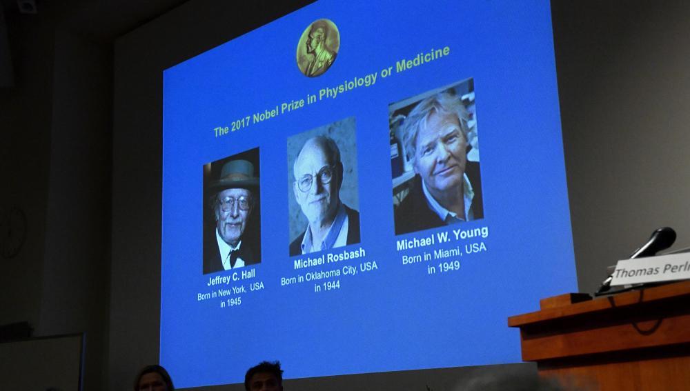 Los investigadores del 'reloj interno del cuerpo' reciben el Nobel de Medicina 2017
