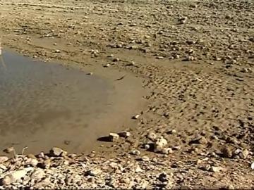 España está viviendo una de las sequía más destructivas de la historia