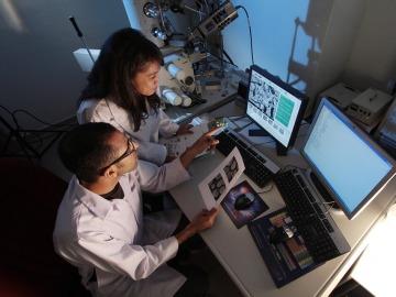 El CNIO es el séptimo mejor centro de investigación oncológica del mundo