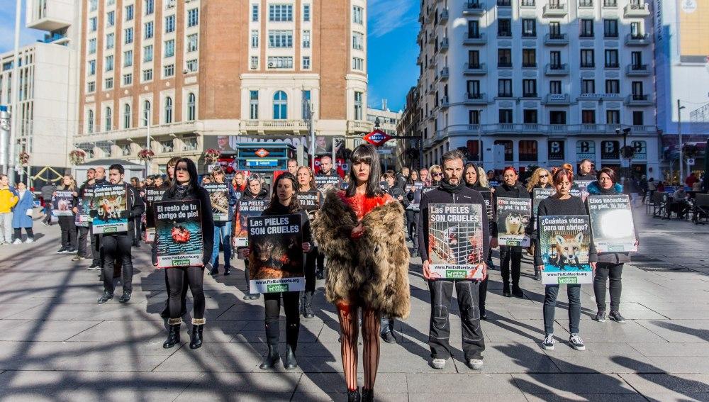 Activistas salen a la calle para protestar contra el uso de pieles de animales