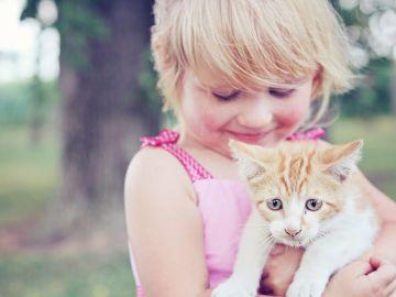 El amor por los animales