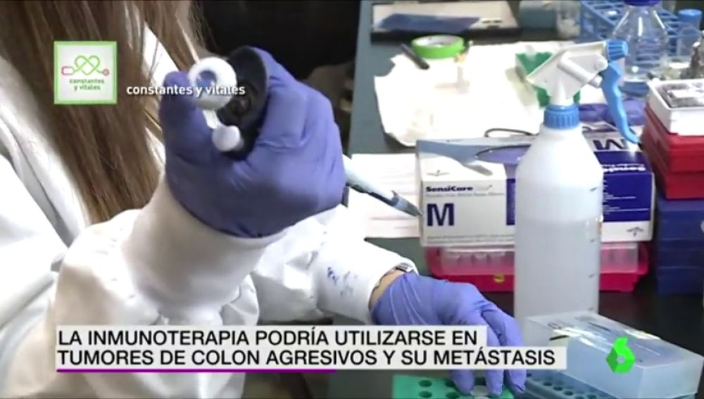 Científicos españoles curan ratones con cáncer de colon y los inmunizan