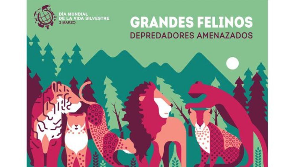 Los grandes felinos, protagonistas del Día Mundial de la Vida Silvestre