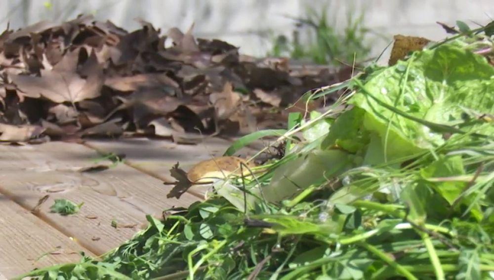 El compost, o cómo convertir los residuos orgánicos en abono nautural