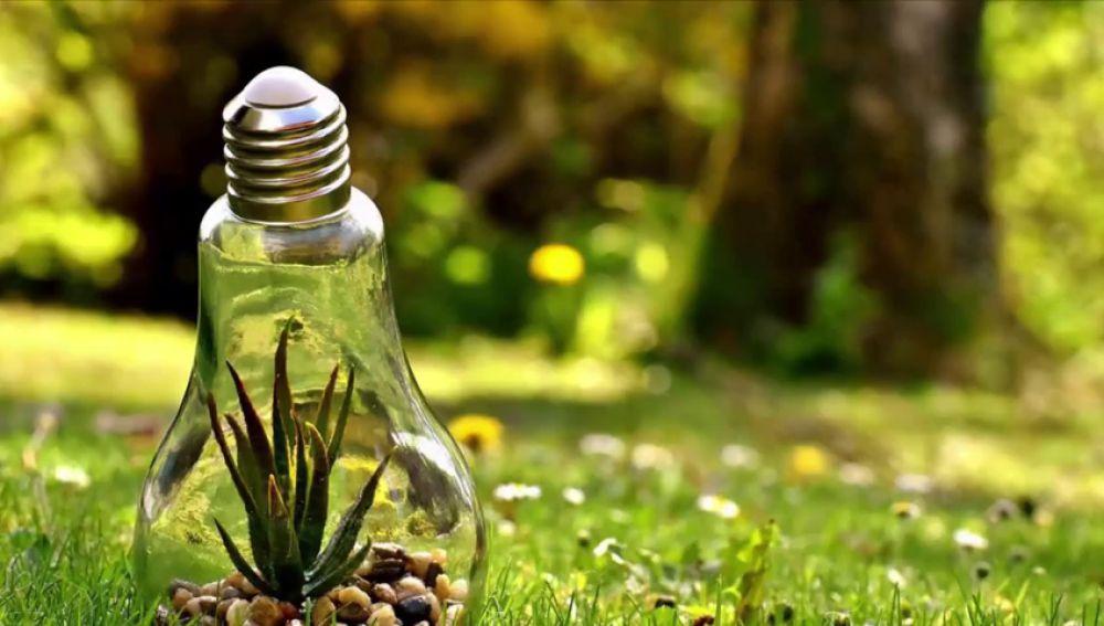 ¿Cómo podemos ayudar a proteger el medio ambiente?