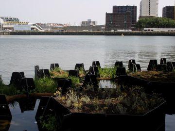 Rotterdam inaugura el primer parque reciclado con plásticos del mar