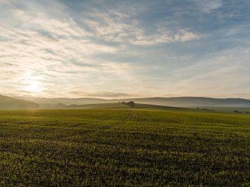 Cuatro proyectos españoles entre los mejores de Europa en Medio Ambiente