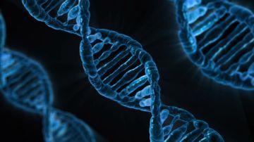 Desarrollan un nanorobot para combatir tumores cancerígenos en China