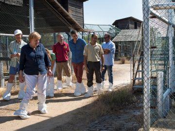 Merkel y Pedro Sánchez visitan al lince ibérico en su parada por el Parque Nacional de Doñana