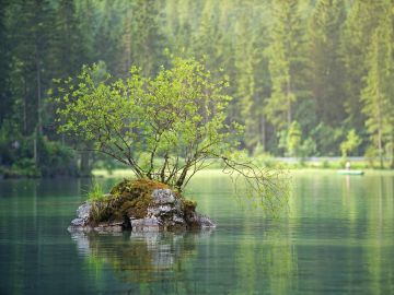 Río sin contaminar