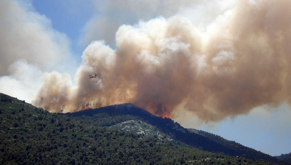 Los incendios forestales han destruido alrededor de 80 hectáreas cada día