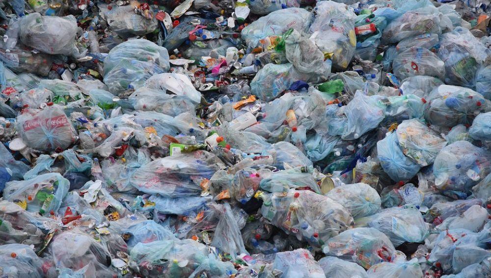 Ecologistas animan a la ciudadanía a unirse al Día Mundial de Limpieza