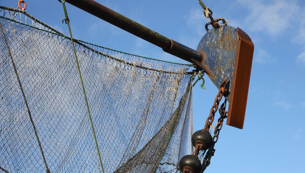 Reducir la pesca no será suficiente para recuperar especies si la temperatura del agua del mar sigue en aumento