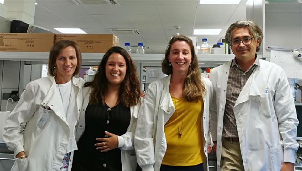 Un grupo de investigadores españoles consiguen evitar el rechazo a los órganos trasplantados