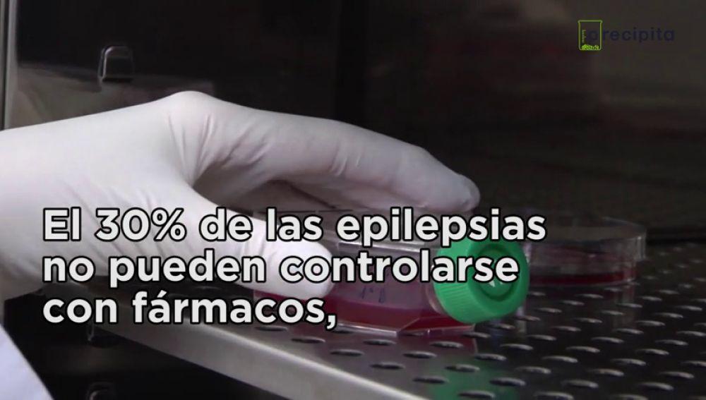Desarrollo de una terapia celular novedosa para curar epilepsias infantiles