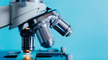 Categoría Publicación Biomédica del año