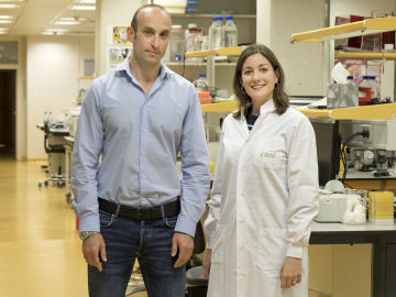 Nabil Djouder, jefe del Grupo de Factores de Crecimiento, Nutrientes y Cáncer del CNIO, y Almudena Chaves-Pérez, investigadora predoctora