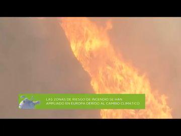 España es el segundo país del Mediterráneo con más incendios forestales al año