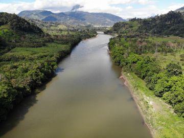 Los objetivos climáticos de esta década solo serían posibles mediante la regeneración de los bosques tropicales