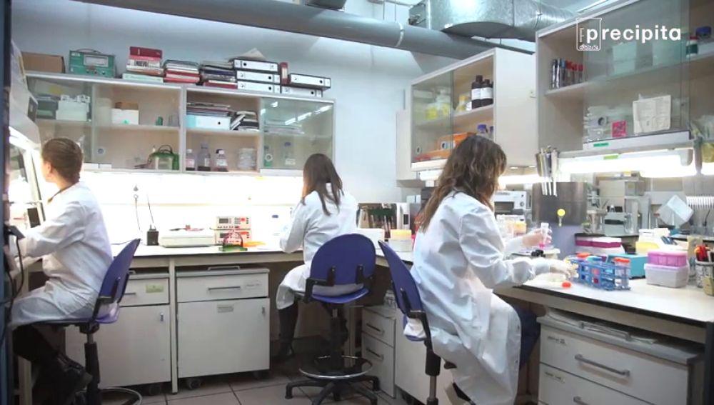 El papel de microorganismos infecciosos podría aumentar el riesgo de desarrollar cáncer