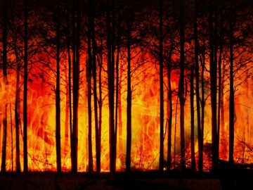 Fotografía de archivo de un incendio