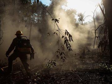 Incendios en la Amazonia brasileña