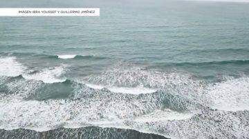 'La Expedición Nemo',  una iniciativa para concienciar sobre la conservación de los océanos