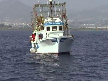¿Por qué es tan necesaria la pesca sostenible?