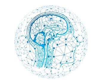 ilustración de una red neuronal en el cerebro