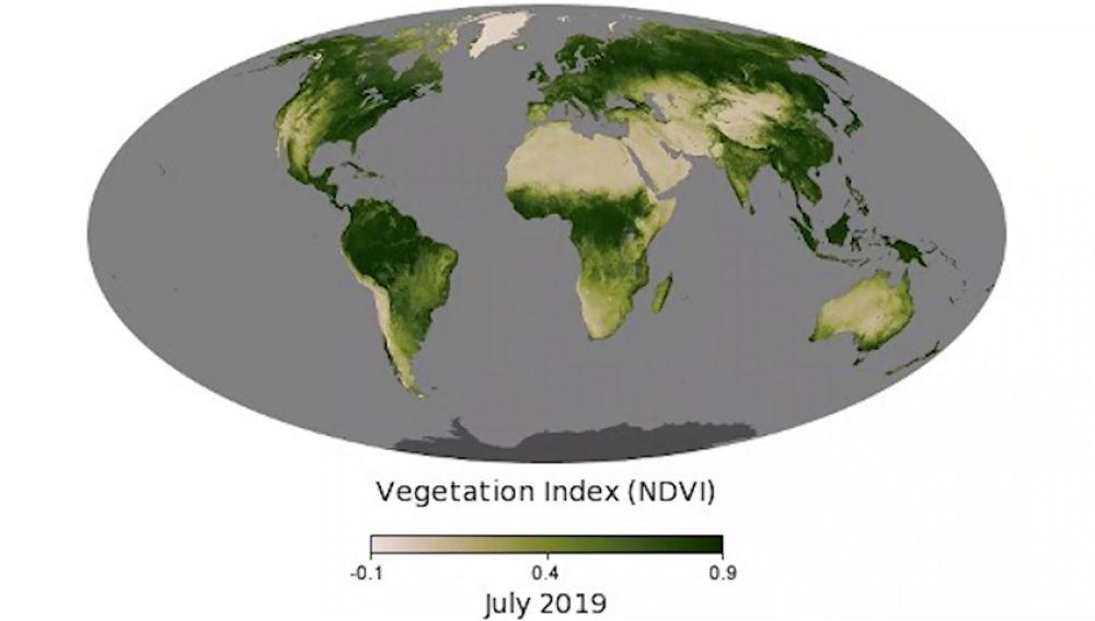Mapa de la vegetación mundial