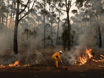 Llueve en el este de Australia pero la calidad del aire en Canberra sigue en niveles peligrosos