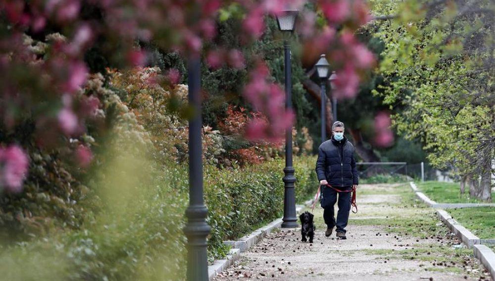 Un hombre con mascarilla pasea a su perro en Madrid