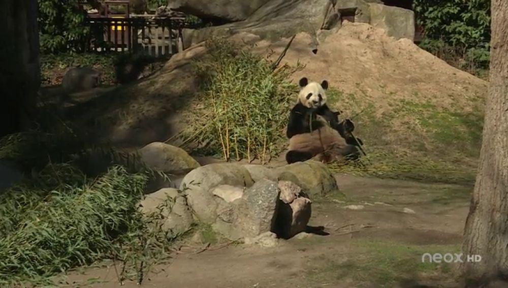 zoo Hazte Eco