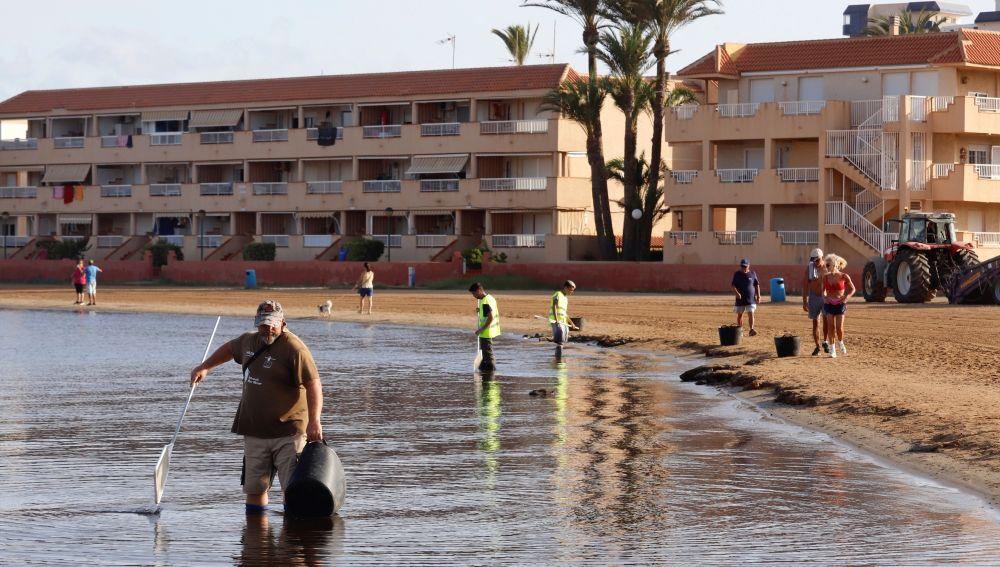 Operarios limpiando la playa de Puerto Bello de La Manga del Mar Menor