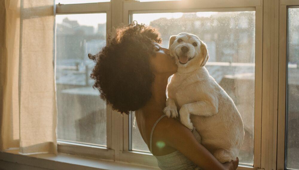 Los animales, seres vivos dotados de sensibilidad