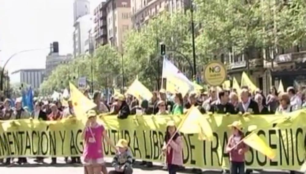 Acciones 2009