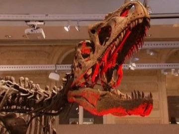 Esqueleto de alosaurio