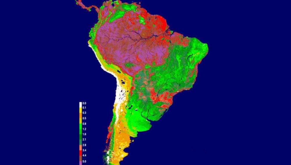 Gráfico sobre la sequía en el Amazonas