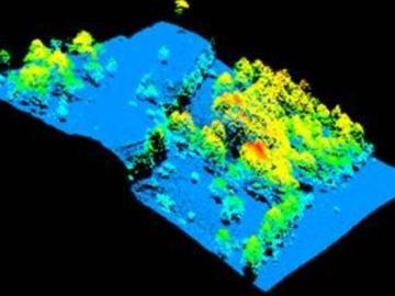 Mapas para estudiar los bosques