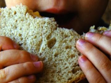 Niño comiendo un sandwich