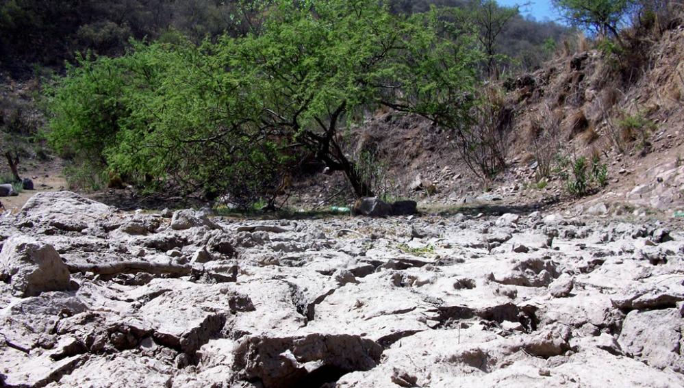 Los efectos de la desertificación