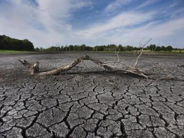 La imagen muestra el fondo de un pantano en West Lafayette, Indiana, EE.UU.