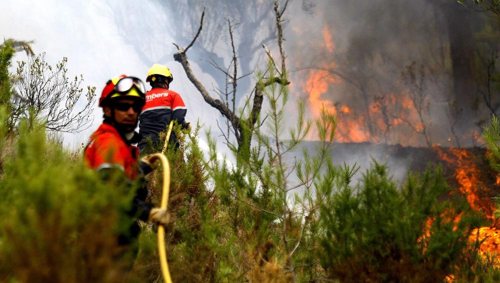 Un muerto y tres heridos en un incendio forestal en Alicante