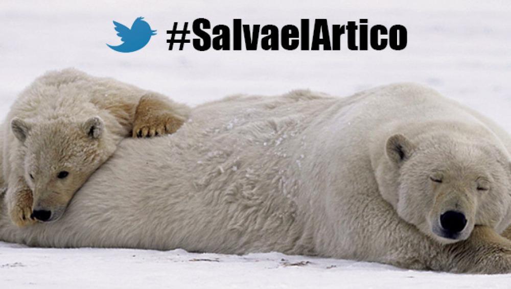 #SalvaelÁrtico