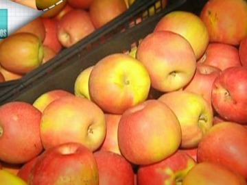La manzana, un excelente tentempié para los niños