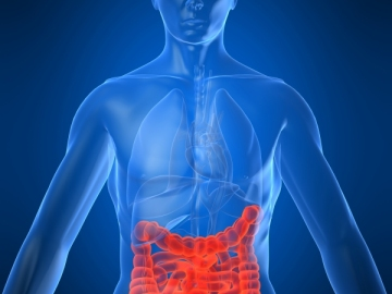 Consiguen frenar la metástasis del cáncer de colon